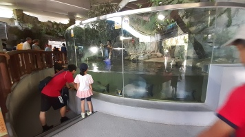 Amphibian and Reptile House